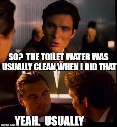 SO?  THE TOILET WATER WAS USUALLY CLEAN WHEN I DID THAT YEAH.  USUALLY | made w/ Imgflip meme maker
