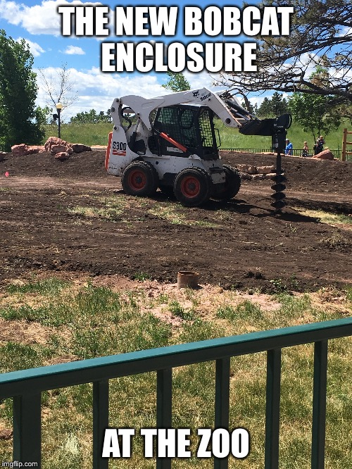 Just a day in the land of irony | THE NEW BOBCAT ENCLOSURE AT THE ZOO | image tagged in memes | made w/ Imgflip meme maker