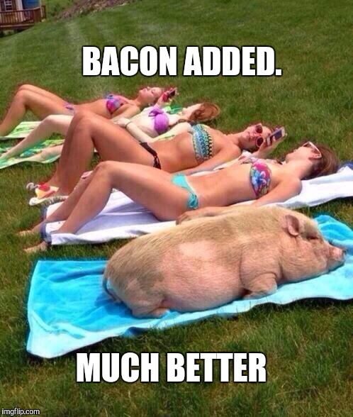 """FIRST DAY of SUMMER"" - Bacon Scent Oil is all the rage! 