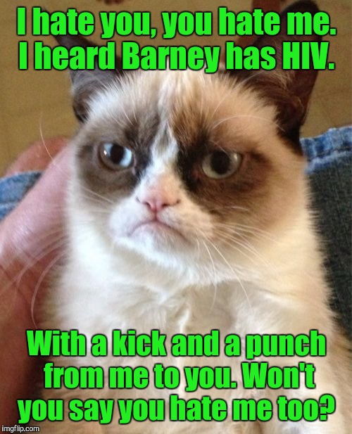 Grumpy Cat Meme | I hate you, you hate me. I heard Barney has HIV. With a kick and a punch from me to you. Won't you say you hate me too? | image tagged in memes,grumpy cat | made w/ Imgflip meme maker