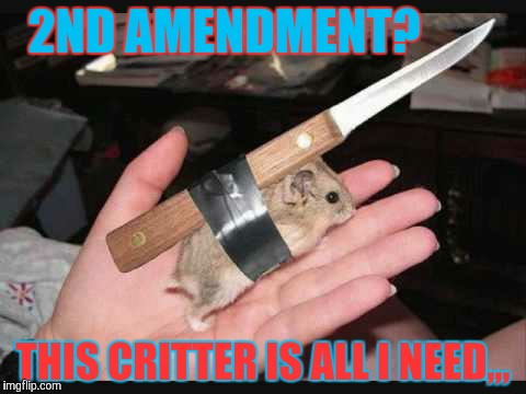 Lock and Load Hamster | 2ND AMENDMENT? THIS CRITTER IS ALL I NEED,,, | image tagged in lock and load hamster | made w/ Imgflip meme maker