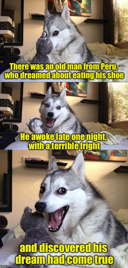 Limerick Week June 19 - 25 (a MnMinPhx Event) | There was an old man from Peru, who dreamed about eating his shoe He awoke late one night, with a terrible fright and discovered his dream h | image tagged in memes,bad pun dog,limerick week | made w/ Imgflip meme maker