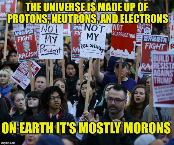 Anti Trump protest | THE UNIVERSE IS MADE UP OF PROTONS, NEUTRONS, AND ELECTRONS ON EARTH IT'S MOSTLY MORONS | image tagged in anti trump protest | made w/ Imgflip meme maker
