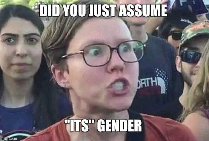"DID YOU JUST ASSUME ""ITS"" GENDER 