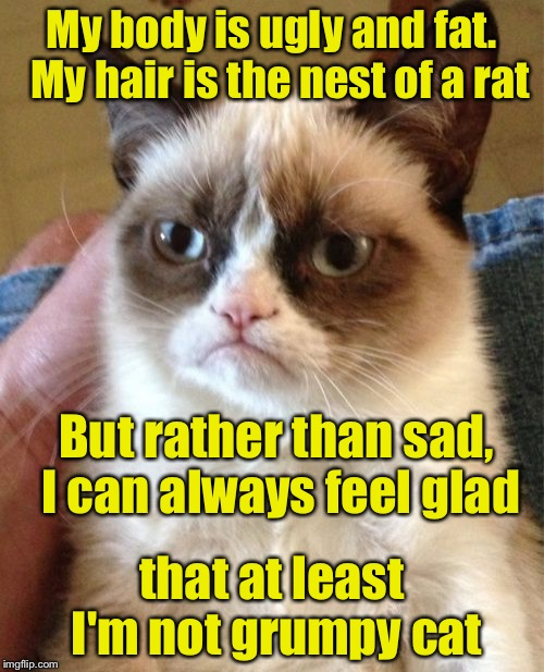 Limerick Week (a MnMinPhx event) | My body is ugly and fat.  My hair is the nest of a rat that at least I'm not grumpy cat But rather than sad, I can always feel glad | image tagged in memes,grumpy cat,limerick week | made w/ Imgflip meme maker