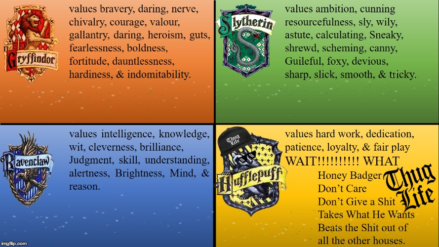 HOGWARTS HOUSES | image tagged in hogwarts,hufflepuff,honey badger | made w/ Imgflip meme maker
