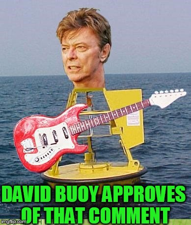 DAVID BUOY APPROVES OF THAT COMMENT | made w/ Imgflip meme maker