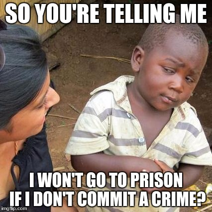 SO YOU'RE TELLING ME I WON'T GO TO PRISON IF I DON'T COMMIT A CRIME? | image tagged in memes,third world skeptical kid | made w/ Imgflip meme maker