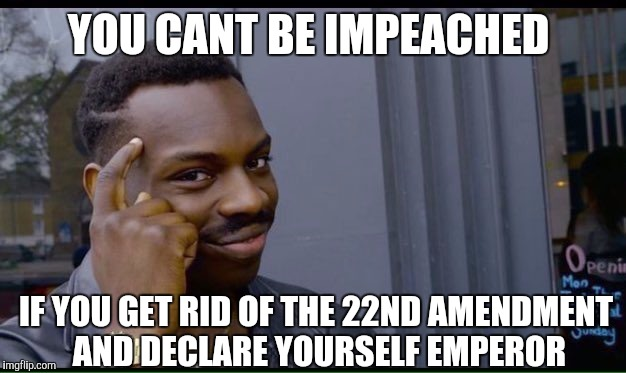YOU CANT BE IMPEACHED IF YOU GET RID OF THE 22ND AMENDMENT AND DECLARE YOURSELF EMPEROR | made w/ Imgflip meme maker
