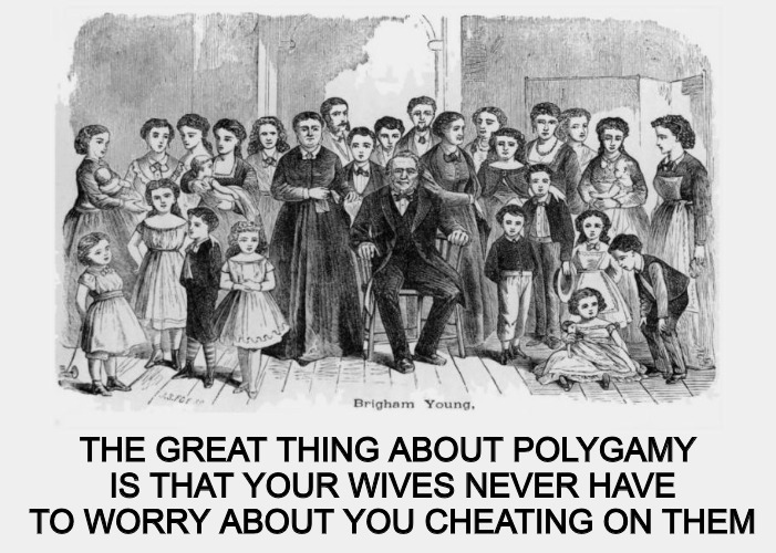 Maybe Brigham Young had the right idea... | THE GREAT THING ABOUT POLYGAMY IS THAT YOUR WIVES NEVER HAVE TO WORRY ABOUT YOU CHEATING ON THEM | image tagged in marriage,polygamy,brigham young,family,mormons | made w/ Imgflip meme maker