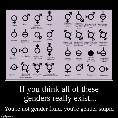 If you think all of these genders really exist... | You're not gender fluid, you're gender stupid | image tagged in funny,demotivationals | made w/ Imgflip demotivational maker