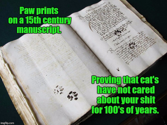 They still don't care.  |  Paw prints on a 15th century manuscript. Proving that cat's have not cared about your shit for 100's of years. | image tagged in funny,cats,attitude | made w/ Imgflip meme maker