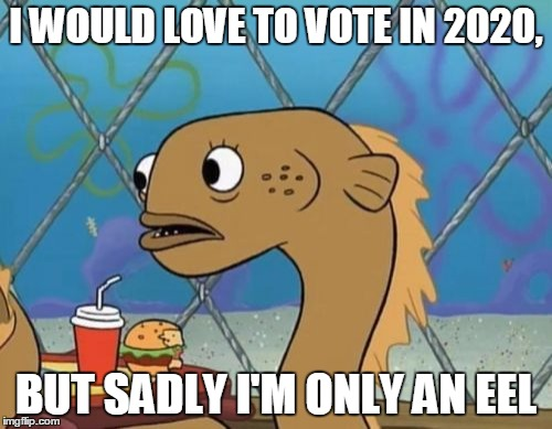 Sadly I Am Only An Eel | I WOULD LOVE TO VOTE IN 2020, BUT SADLY I'M ONLY AN EEL | image tagged in memes,sadly i am only an eel | made w/ Imgflip meme maker