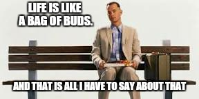 LIFE IS LIKE A BAG OF BUDS. AND THAT IS ALL I HAVE TO SAY ABOUT THAT | made w/ Imgflip meme maker
