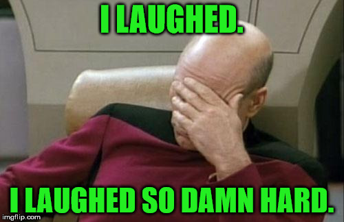 Captain Picard Facepalm Meme | I LAUGHED. I LAUGHED SO DAMN HARD. | image tagged in memes,captain picard facepalm | made w/ Imgflip meme maker