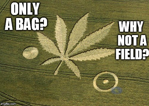 ONLY A BAG? WHY NOT A FIELD? | made w/ Imgflip meme maker
