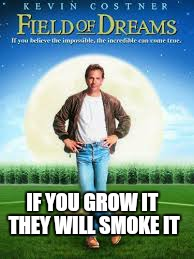 IF YOU GROW IT THEY WILL SMOKE IT | made w/ Imgflip meme maker