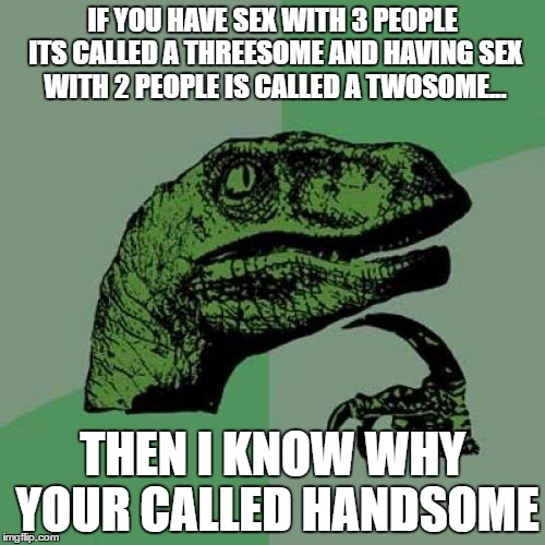 Philosoraptor Meme | IF YOU HAVE SEX WITH 3 PEOPLE ITS CALLED A THREESOME AND HAVING SEX WITH 2 PEOPLE IS CALLED A TWOSOME... THEN I KNOW WHY YOUR CALLED HANDSOM | image tagged in memes,philosoraptor | made w/ Imgflip meme maker