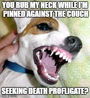 YOU RUB MY NECK WHILE I'M PINNED AGAINST THE COUCH SEEKING DEATH PROFLIGATE? | made w/ Imgflip meme maker