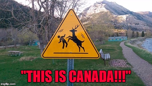 "For all our Canadian Imgflippers...apparently this sign is in Alberta. | ""THIS IS CANADA!!!"" 