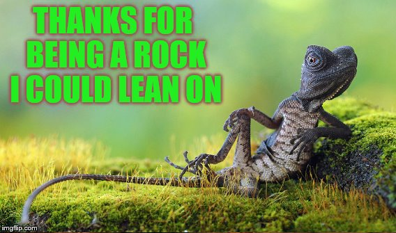 THANKS FOR BEING A ROCK I COULD LEAN ON | made w/ Imgflip meme maker
