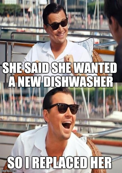 SHE SAID SHE WANTED A NEW DISHWASHER SO I REPLACED HER | image tagged in leonardo dicaprio wolf of wall street | made w/ Imgflip meme maker