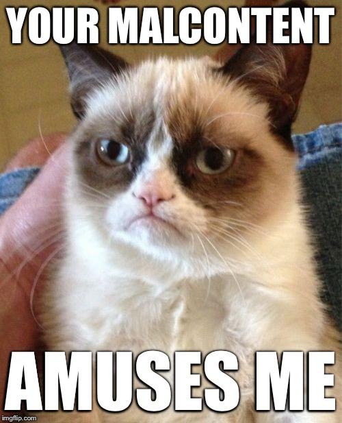 Grumpy Cat Meme | YOUR MALCONTENT AMUSES ME | image tagged in memes,grumpy cat | made w/ Imgflip meme maker