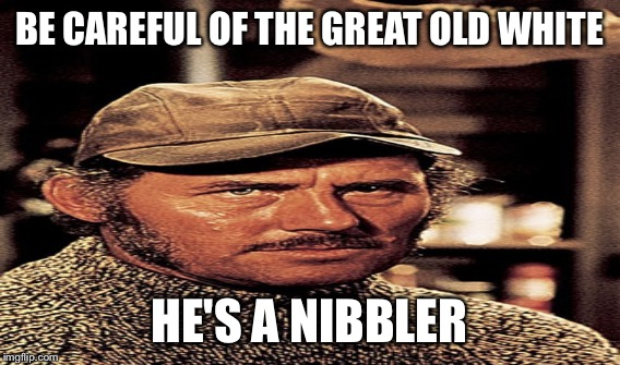 BE CAREFUL OF THE GREAT OLD WHITE HE'S A NIBBLER | made w/ Imgflip meme maker
