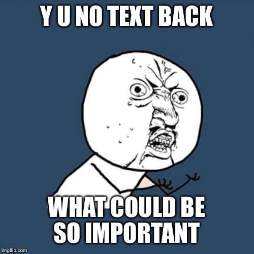 Y U No Meme | Y U NO TEXT BACK WHAT COULD BE SO IMPORTANT | image tagged in memes,y u no | made w/ Imgflip meme maker
