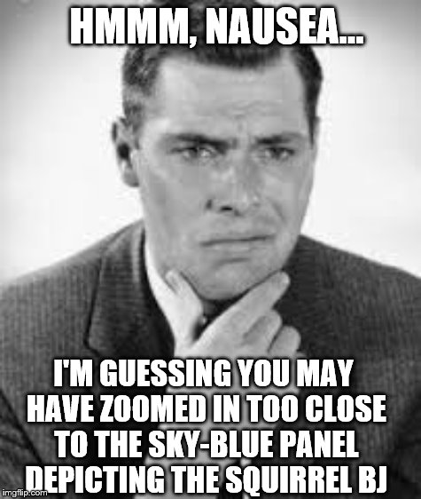 HMMM, NAUSEA... I'M GUESSING YOU MAY HAVE ZOOMED IN TOO CLOSE TO THE SKY-BLUE PANEL DEPICTING THE SQUIRREL BJ | made w/ Imgflip meme maker