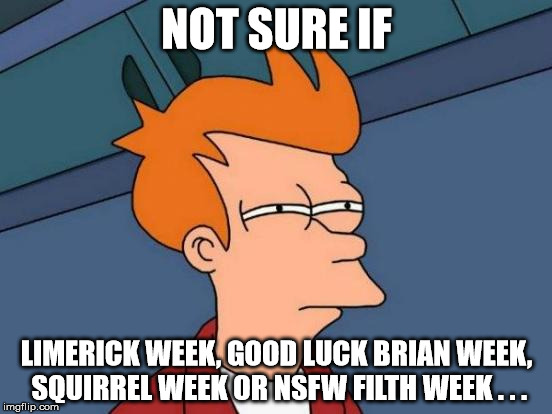 Anyone help?? | NOT SURE IF LIMERICK WEEK, GOOD LUCK BRIAN WEEK, SQUIRREL WEEK OR NSFW FILTH WEEK . . . | image tagged in memes,futurama fry,limerick week,good luck brian week,squirrel week,nsfw filth week | made w/ Imgflip meme maker