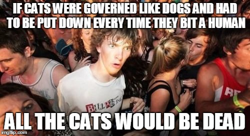 Sudden Clarity Clarence Meme | IF CATS WERE GOVERNED LIKE DOGS AND HAD TO BE PUT DOWN EVERY TIME THEY BIT A HUMAN ALL THE CATS WOULD BE DEAD | image tagged in memes,sudden clarity clarence | made w/ Imgflip meme maker