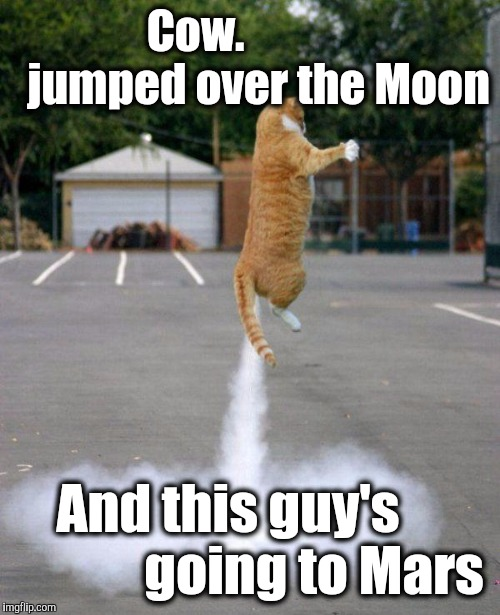 Rocket cat | Cow.              jumped over the Moon And this guy's                going to Mars | image tagged in rocket cat | made w/ Imgflip meme maker