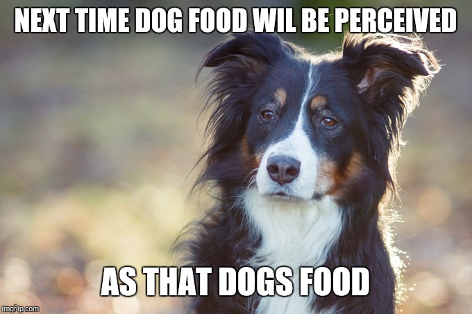 NEXT TIME DOG FOOD WIL BE PERCEIVED AS THAT DOGS FOOD | made w/ Imgflip meme maker