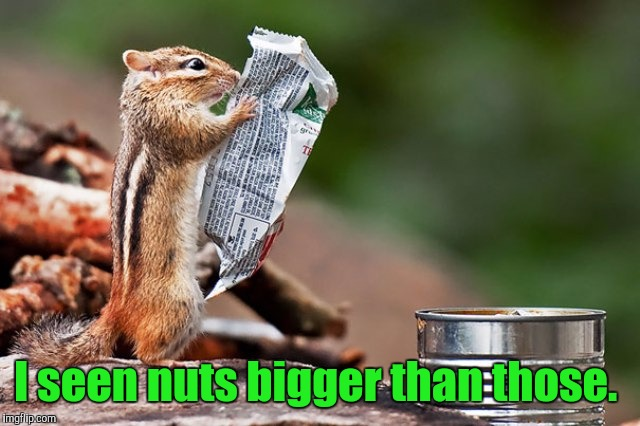 zz86x.jpg | I seen nuts bigger than those. | image tagged in zz86xjpg | made w/ Imgflip meme maker
