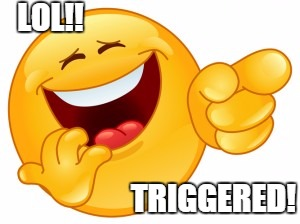 LOL!! TRIGGERED! | made w/ Imgflip meme maker