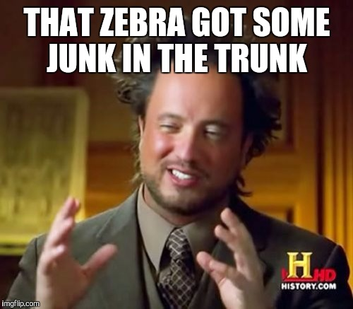 Ancient Aliens Meme | THAT ZEBRA GOT SOME JUNK IN THE TRUNK | image tagged in memes,ancient aliens | made w/ Imgflip meme maker