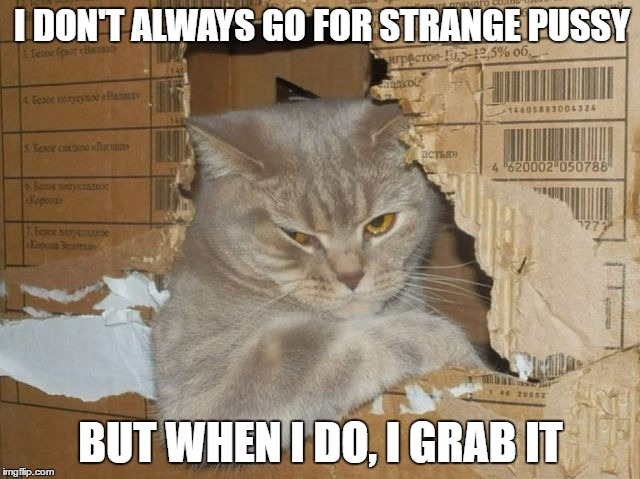 The Most Interesting Cat In The World | I DON'T ALWAYS GO FOR STRANGE PUSSY BUT WHEN I DO, I GRAB IT | image tagged in pussy trump grab | made w/ Imgflip meme maker