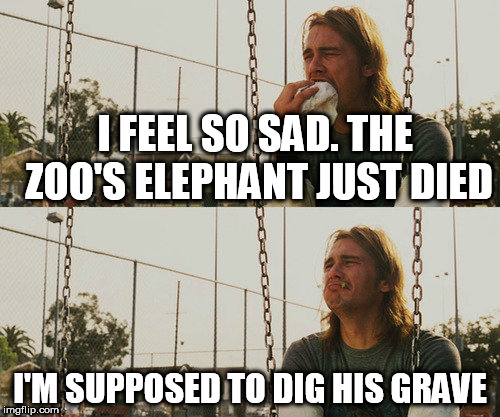 First World Stoner Problems Meme | I FEEL SO SAD. THE ZOO'S ELEPHANT JUST DIED I'M SUPPOSED TO DIG HIS GRAVE | image tagged in memes,first world stoner problems | made w/ Imgflip meme maker