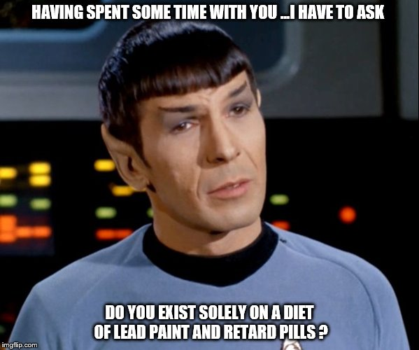 HAVING SPENT SOME TIME WITH YOU ...I HAVE TO ASK DO YOU EXIST SOLELY ON A DIET OF LEAD PAINT AND RETARD PILLS ? | image tagged in star trek spock | made w/ Imgflip meme maker