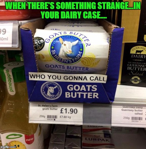 Another song meme to get stuck in your head!!! | WHEN THERE'S SOMETHING STRANGE...IN YOUR DAIRY CASE.... | image tagged in funny signs,memes,goat's butter,funny,signs,animals | made w/ Imgflip meme maker