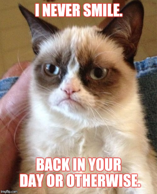 Grumpy Cat Meme | I NEVER SMILE. BACK IN YOUR DAY OR OTHERWISE. | image tagged in memes,grumpy cat | made w/ Imgflip meme maker