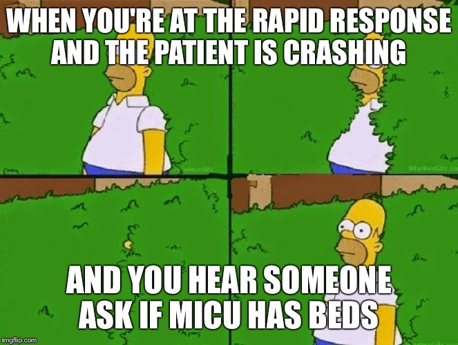 HOMER BUSH |  WHEN YOU'RE AT THE RAPID RESPONSE AND THE PATIENT IS CRASHING; AND YOU HEAR SOMEONE ASK IF MICU HAS BEDS | image tagged in homer bush | made w/ Imgflip meme maker