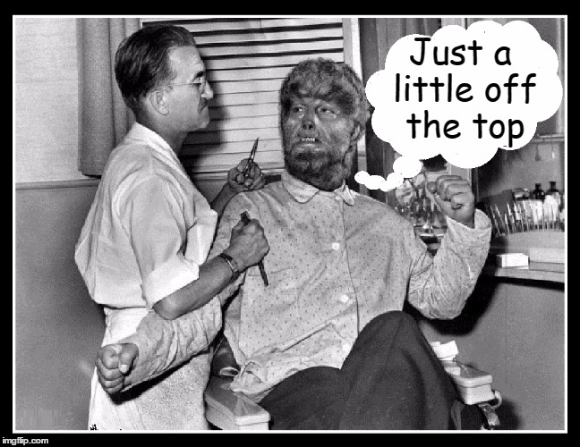 The Curse of the Werewolf | Just a little off the top | image tagged in vince vance,lon chaney jr,werewolf,the wolfman goes to the barber,barber,memes | made w/ Imgflip meme maker