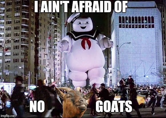 I AIN'T AFRAID OF NO                    GOATS | made w/ Imgflip meme maker