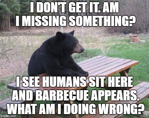 It's a mystery... | I DON'T GET IT. AM I MISSING SOMETHING? I SEE HUMANS SIT HERE AND BARBECUE APPEARS. WHAT AM I DOING WRONG? | image tagged in memes,bad luck bear,barbecue | made w/ Imgflip meme maker
