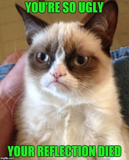 Grumpy Cat Meme | YOU'RE SO UGLY YOUR REFLECTION DIED | image tagged in memes,grumpy cat | made w/ Imgflip meme maker