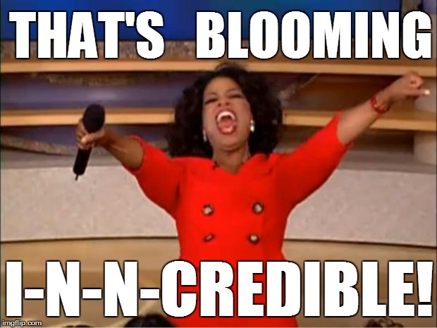 Oprah You Get A Meme | THAT'S   BLOOMING I-N-N-CREDIBLE! | image tagged in memes,oprah you get a | made w/ Imgflip meme maker