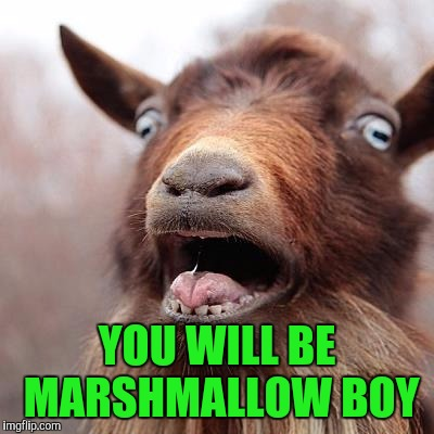 YOU WILL BE MARSHMALLOW BOY | made w/ Imgflip meme maker