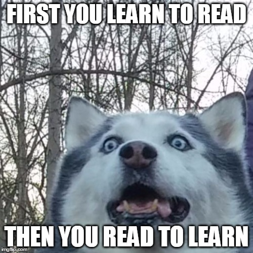 Crazy Husky is Crazy | FIRST YOU LEARN TO READ THEN YOU READ TO LEARN | image tagged in crazy husky is crazy | made w/ Imgflip meme maker